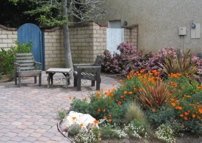 drought tolerant landscaping Barnum After