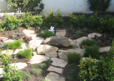 drought tolerant landscaping Corradini After