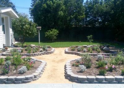 drought-tolerant-English-garden