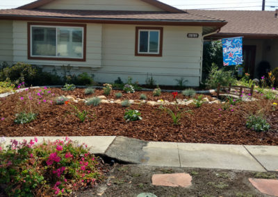 drought tolerant landscaping Lopez After