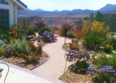 drought tolerant landscaping Richards Front After